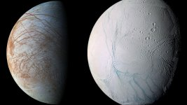 Alien Life Hunters are Focusing on Icy Ocean Moon Europa and Enceladus